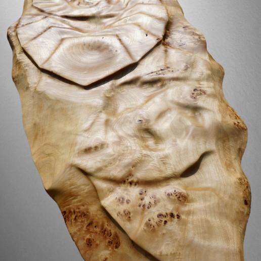 Holzkunstwerk - Strukturen der Schöpfung