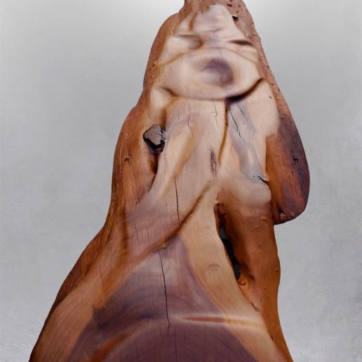 Holzkunstwerk - Fragment
